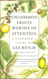 Uncommon Fruits Worthy of Attention: A Gardeners Guide