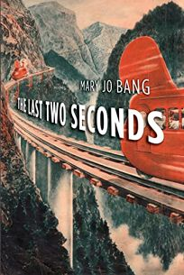 The Last Two Seconds: Poems