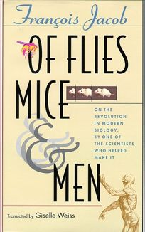 Of Flies
