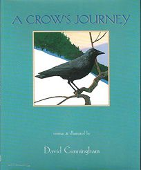 A Crows Journey