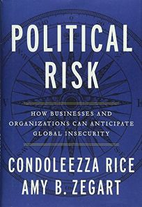 Political Risk: How Businesses and Organizations Can Anticipate Global Insecurity