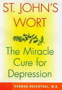 St. Johns Wort: The Herbal Way to Feeling Good