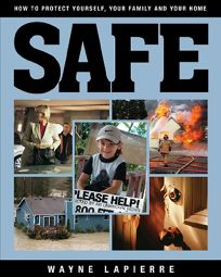 Safe: The Responsible Americans Guide to Home and Family Security