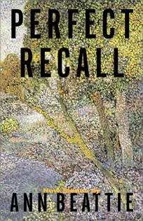 Perfect Recall: A Short Story