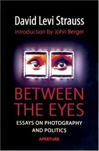 nonfiction book review between the eyes essays on photography between the eyes essays on photography and politics