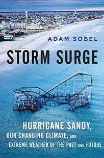 Storm Surge: Hurricane Sandy