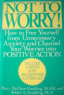 Not to Worry!: How to Free Yourself from Unnecessary Anxiety and Channel Your Worries Into Positive Action