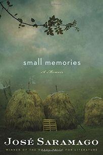 Small Memories: A Memoir