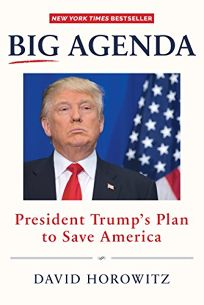 Big Agenda: President Trumps Plan to Save America