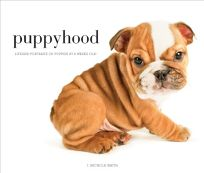 Puppyhood: Life- Size Portraits of Puppies At 6 Weeks Old