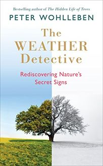 The Weather Detective: Redis-covering Nature's Secret Signs