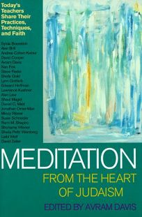 Meditation from the Heart of Judaism: Todays Masters Teach about Their Practice