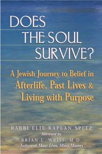 Does the Soul Survive?: A Jewish Journey to Belief in Afterlife